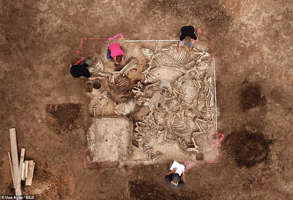 Pronađena grobnica germanskog gospodara ili princa sa skeletima šest žena