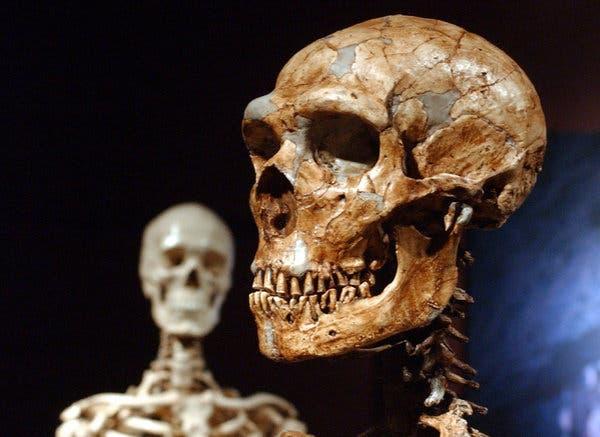 Arheolozi u pećini blizu Majdanpeka otkrili fragment vilice neandertalca