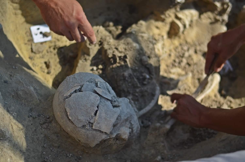 Otkriće groba na lokalitetu Donja Branjevina