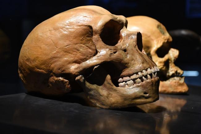 Arheološka otkrića koja su obeležila 2020. godinu-V deo