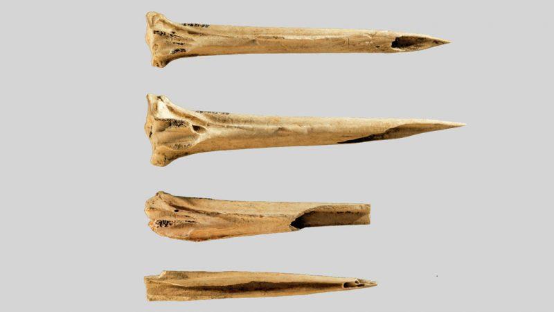 Najstariji poznati alati za tetoviranje pronađeni su na lokalitetu u Tenesiju