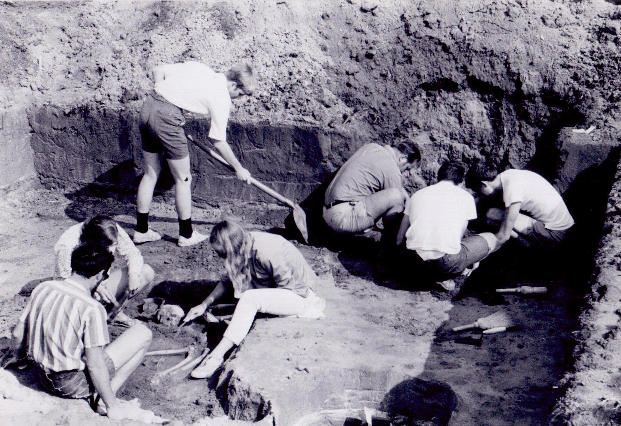 Stara istraživanja, nova otkrića: nekropola u Mokrinu