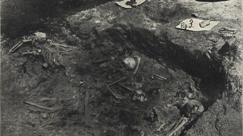 Grupna grobnica ili mesto neolitskog zločina na lokalitetu Vinča-Belo Brdo